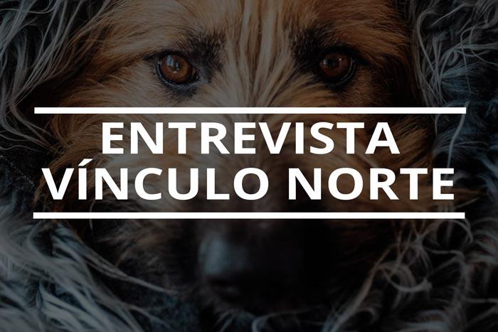 entrevista-a-vínculo-norte