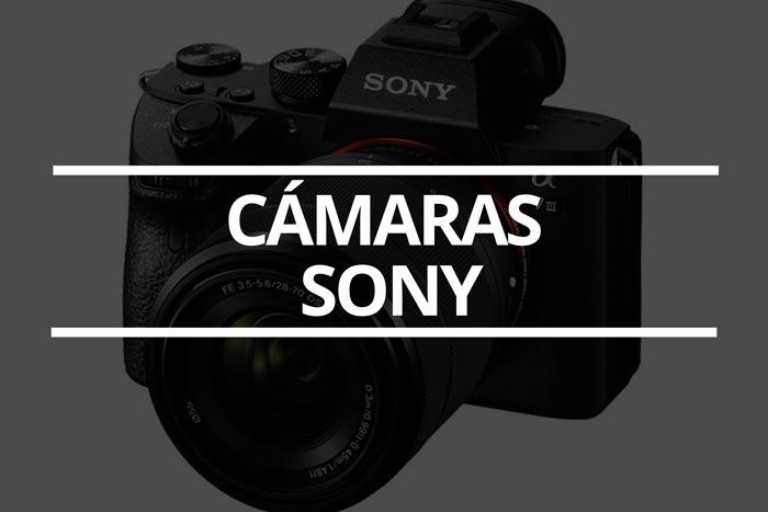que-camara-Sony-comprar-en-2021