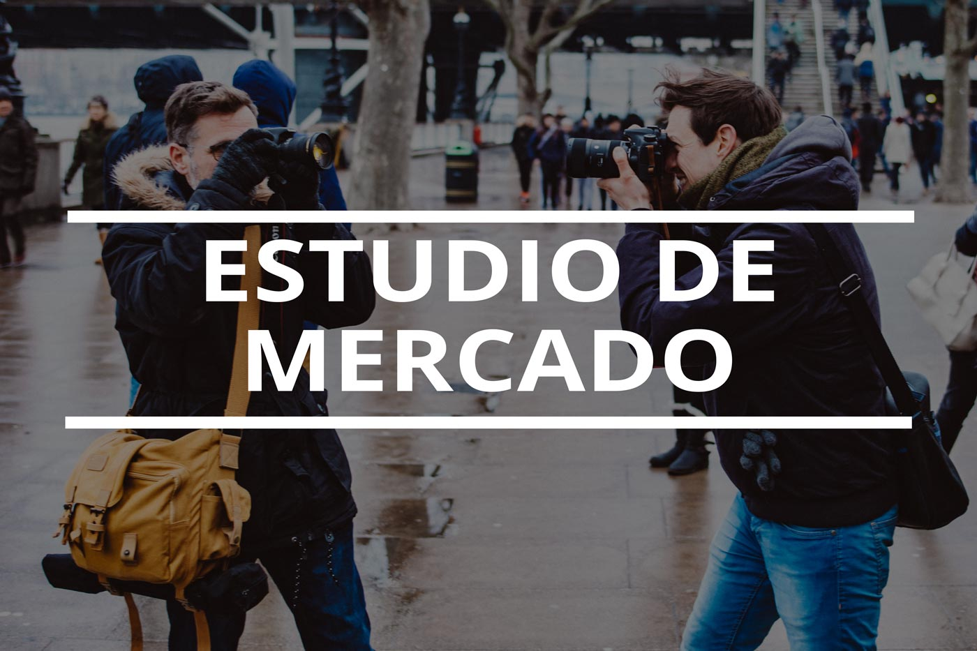 estudio de mercado para fotografos