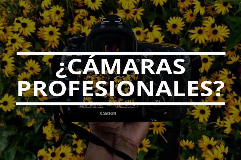 Cámaras profesionales de fotografía