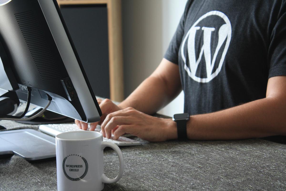 Wordpress para fotografos, curso completo